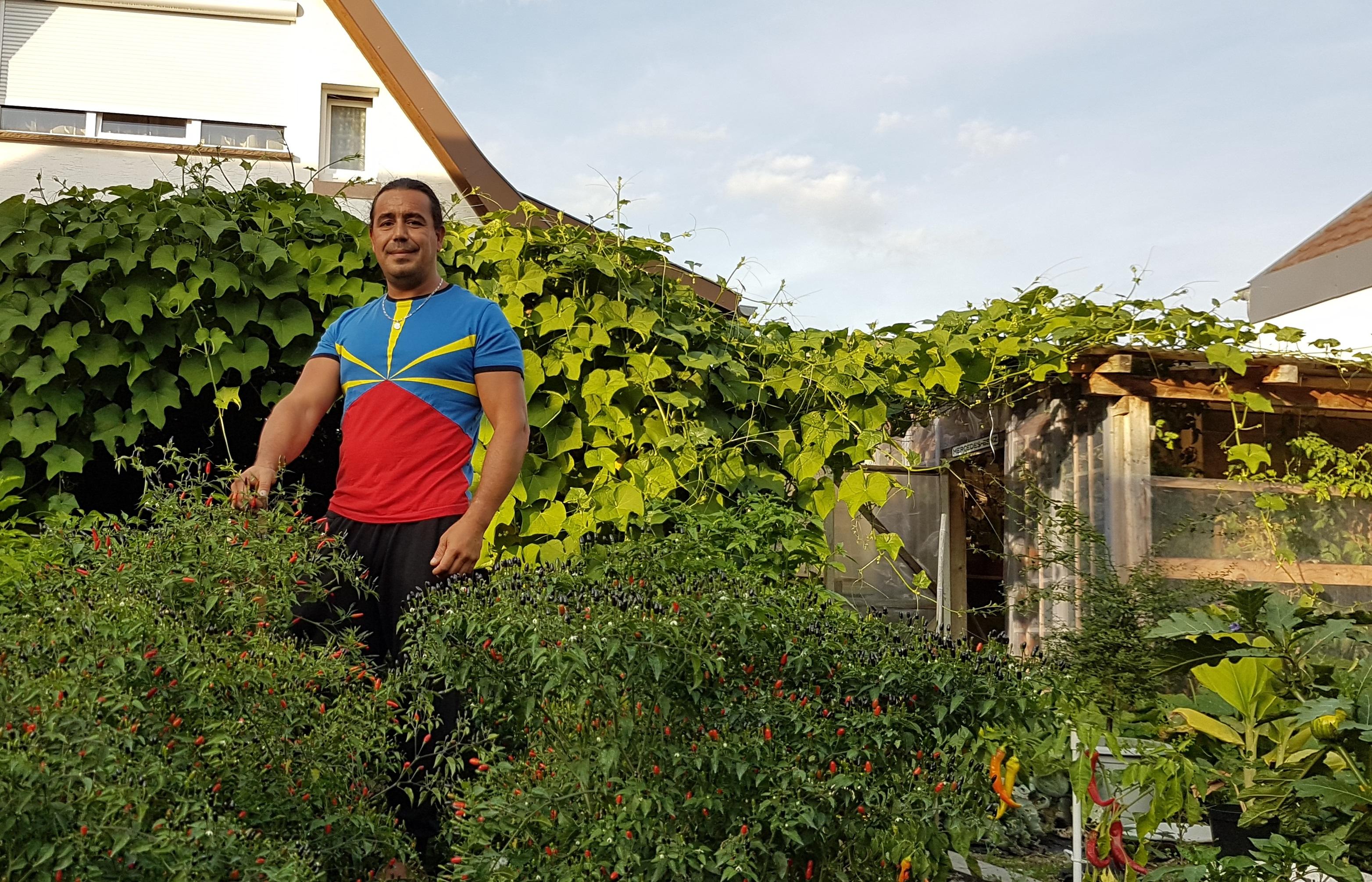 Legumes A Mettre Dans Le Jardin un jardin réunionnais en alsace - réunionnais du monde